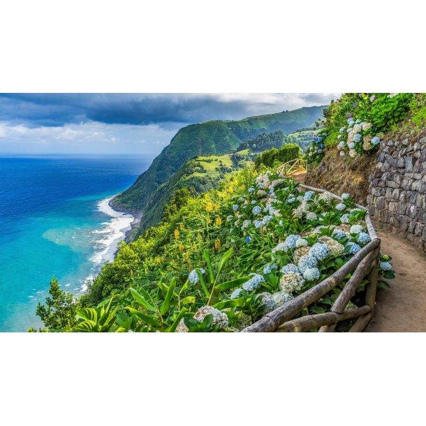 Vandreferie på Azorerne 21. - 28. juli 2020